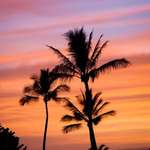 #1 Hawaii Sunset