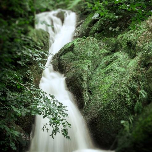 #9 The Waterfall