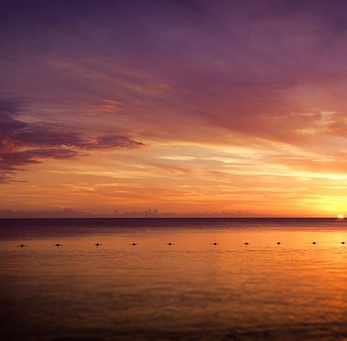 #12 Mauritian Sunset