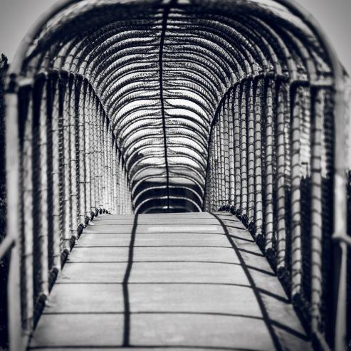 Cage_Bridge