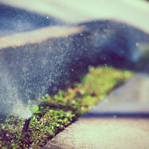 Sprinkler_Ambush